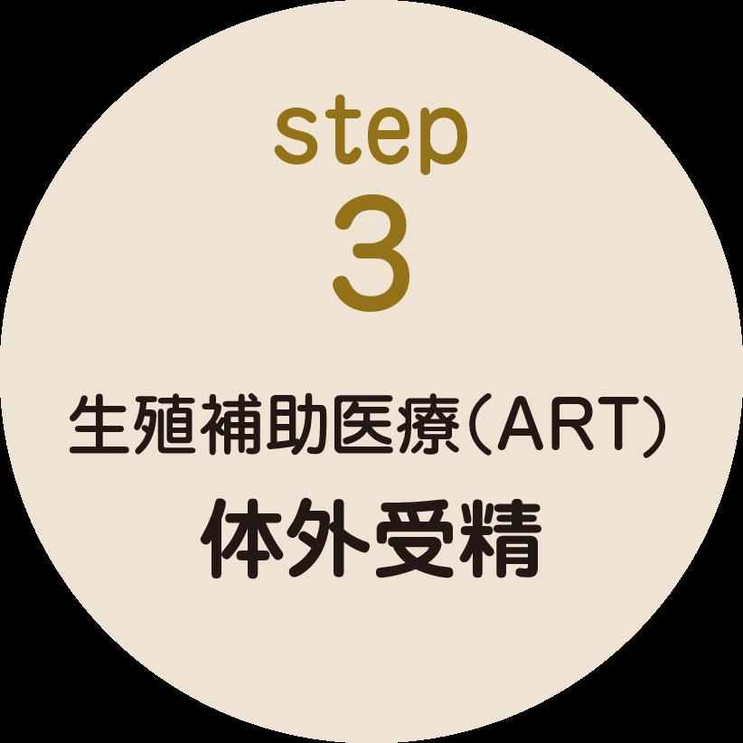 step3 生殖補助医療(ART) 体外受精